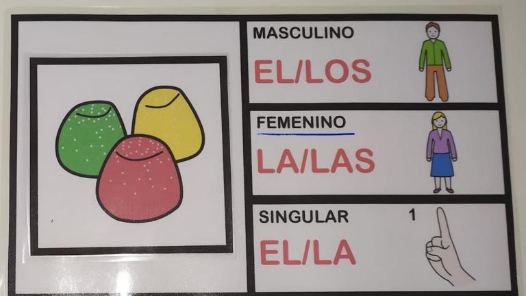 Género y número del sustantivo